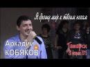 Аркадий КОБЯКОВ - Я брошу мир к твоим ногам Татарск, 28.02.2015