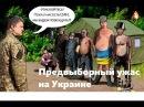 Предвыборный ужас на Украине