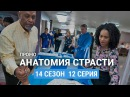 Анатомия страсти 14 сезон 12 серия Русское промо