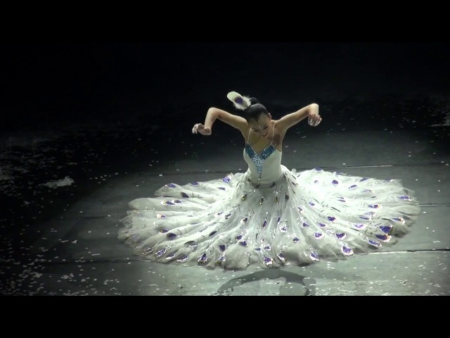 Yang Liping amazing Peacock dance Enjoy the love of beauty