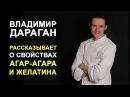 Владимир Дараган рассказывает о желатине и агар агаре