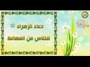 دعاء فاطمة الزهراء عليها السلام للخلاص من 1