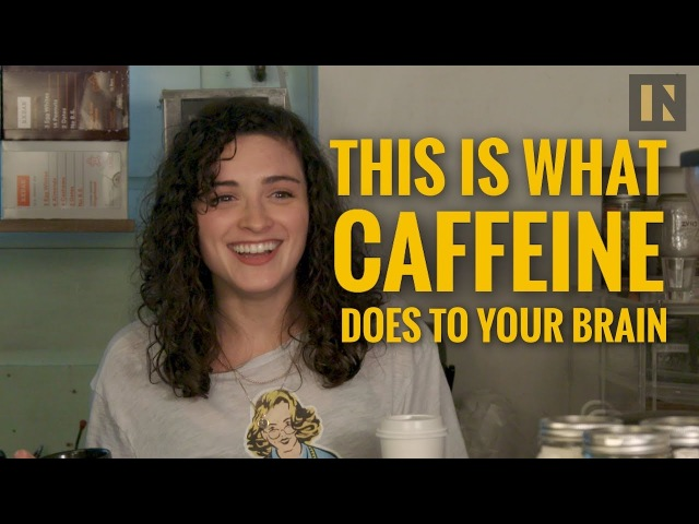 A Neuroscientist Explains What Caffeine Does to Your Brain | Inverse