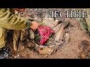 Дикая кухня - ЗАПЕЧЕННОЕ МЯСО В КАМЕННОЙ ЯМЕ BUSHCRAFT COOKING IN STEAM PIT