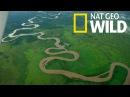 National Geographic - Река Конго - Река Монстров - Документальный фильм