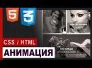 CSS3 Animation hover effect Практика CSS HTML5