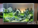 Aquascape Sunset - Décor d'aquarium par Laurent Garcia, Aquarilis