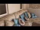 Квартира в ЖК Лотос в Приморском Парке красивейшем месте Ялты