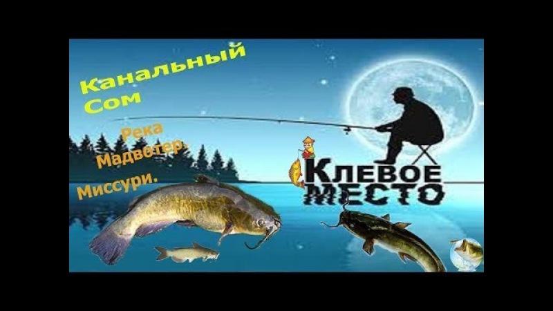 FishingPlanet ЛОВИМ СОМА