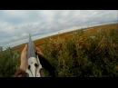 Охота на гуся в НАО с Батей осень 2017 Goose hunting