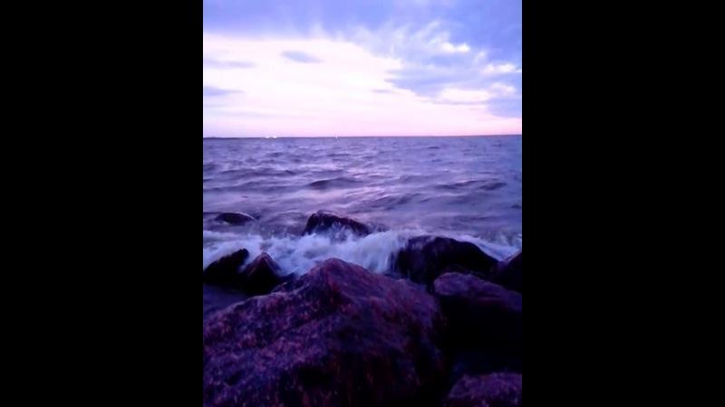 следующая остановка- финский залив