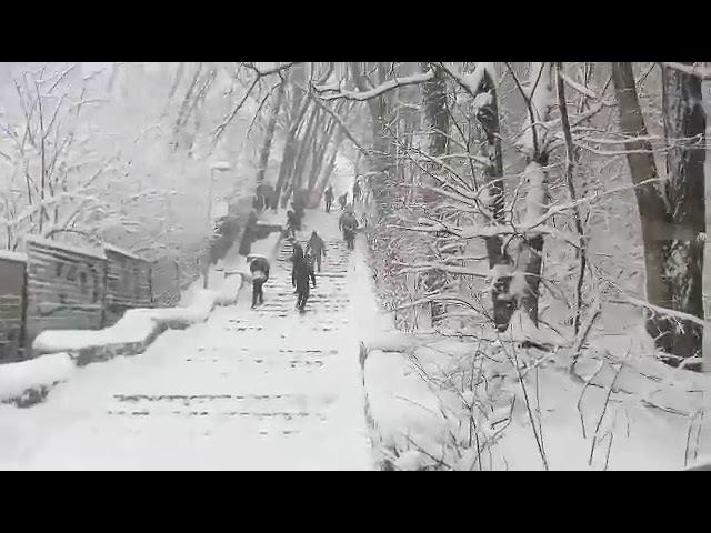 Снег стелится, КУРСАНТСКАЯ ЛЕСТНИЦА (Одесса)