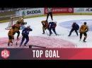 Fredrik Pettersson - ZSC Lions Zurich | Top Goals