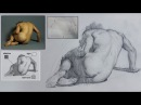 Figure Drawing Process