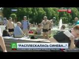 Нападение на корреспондента НТВ в день ВДВ 2017 г. в Парке Горького 18+.mp4
