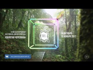 Фестиваль Золотая Черепаха: 14 октября  19 ноября | Москва, Санкт-Петербург
