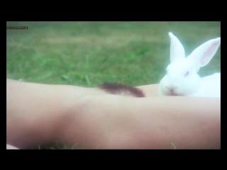 Marina Pierro, Gaelle Legrand Nude - Les héroïnes du mal (1979)