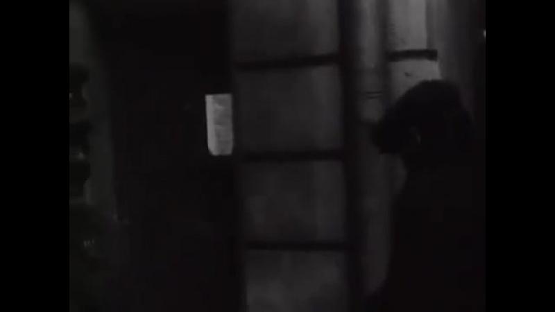 Рожденная революцией. Расстрел агитатора. (серия 7) ( 360 X 480 ).mp4