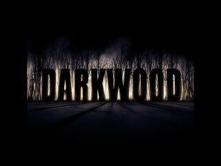 Стрим Darkwood перед выходом