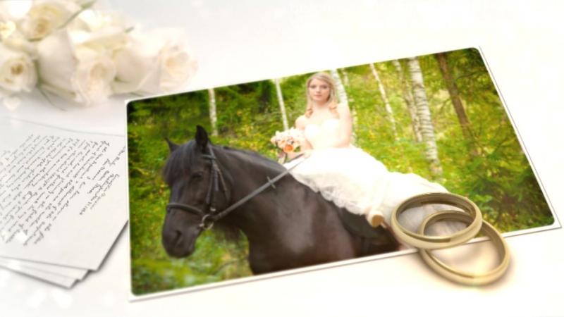 Свадебный альбом для Андрея и Виолы