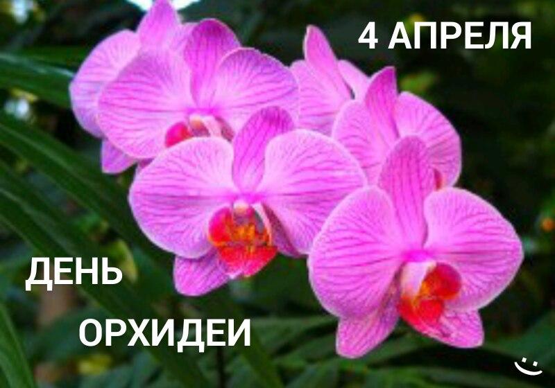 https://pp.userapi.com/c840221/v840221429/8f403/et_nX7TVWus.jpg