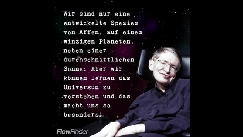 10 der besten Zitate von Stephen Hawking (*08.01.1942 - 14.03.2018✝). Ruhe in Frieden!