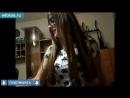 Порно Молодая сосалка делает минет в маске на камеру, скрытая камера, веб, вебка, школьница, сосет, кончил на лицо