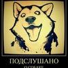 Подслушано СоБаКоВоДаМи/Катав-Ивановский Район