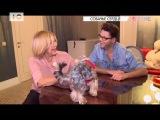 #ВТЕМЕ: Чем Любовь Успенская кормит своих котов и собак?