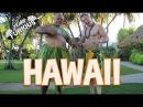 Furious World Tour | Hawaii - Huge Omelets/Pancakes, Surfing, Pineapples, Luau | Furious Pete