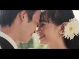 Hoai Tam Thao Vy wedding clip