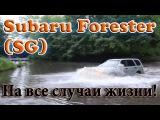 Обзор Subaru Forester SG (2007г) - авто на все случаи жизни