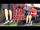 3 Best Ways to Train Calves WITHOUT a Machine