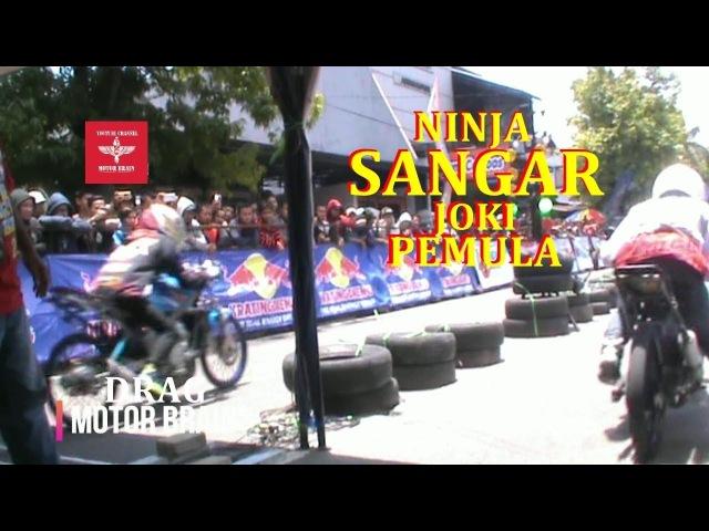 DUEL DRAG NINJA SANGAR PEMBALAP PEMULA | VIDEO DRAG BIKE
