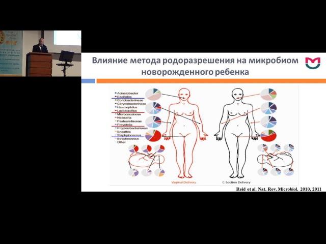 Функциональные взаимодействия микробиоты кишечника с организмом хозяина. Шумилов П.В. (PediatrRussia) педиатрия