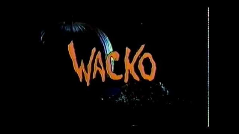 Wacko Uma Comédia Maluca