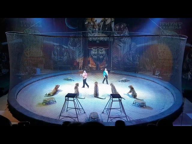 Цирк Мстислава Запашного в Тольятти второе отделение