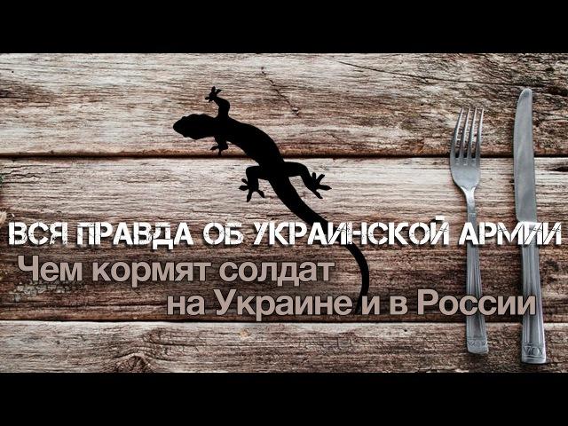 Андрей Ваджра. Вся правда об украинской армии: чем кормят солдат на Украине и в России (№ 21)