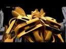 S2 Серия 12: Трансформеры / Transformers Научная нефантастика (Митио Каку)