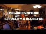 Melodiesinfonie, S. Fidelity &amp Bluestaeb DJ Set Le Mellotron