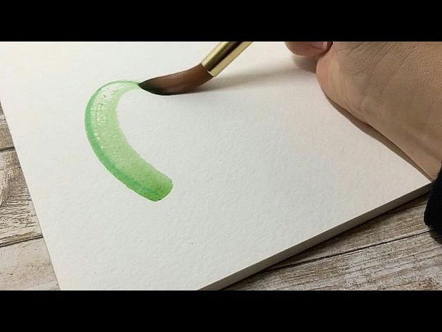 Рисование акварелью рисуем кактус цветок и птичку