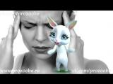 Всё Кукушку пора Менять ✌✌✌ Смешное прикольное видео от Зайки Домашней Хозяйки.mp4