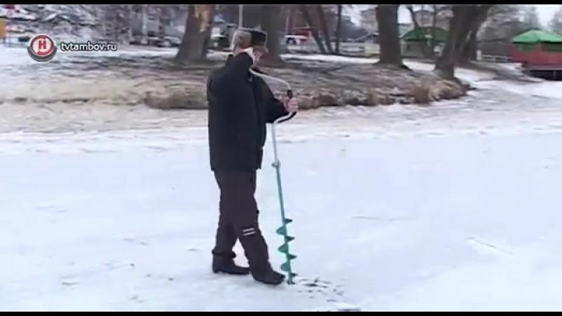 Специалисты рассказали о влиянии аномальной зимы на природу и человека