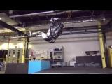 Робот Atlas делает сальто назад