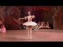 Танец Феи драже отрывок из балета Щелкунчик