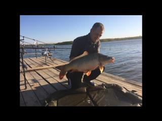 Carp Hunter 2017