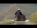BBC Аттенборо 60 лет с дикой природой 3 Наша хрупкая планета Документальный 2012