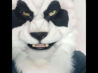 Pandaren fursuit