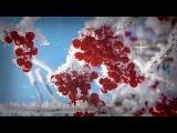 Damian Wasse - Siberia (original mix)