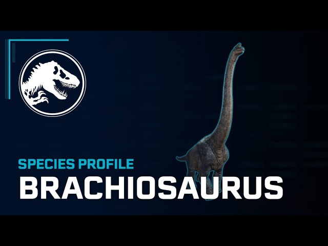 Species Profile - Brachiosaurus